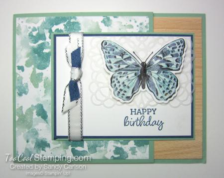 Butterfly brilliance happy birthday - carlson 1