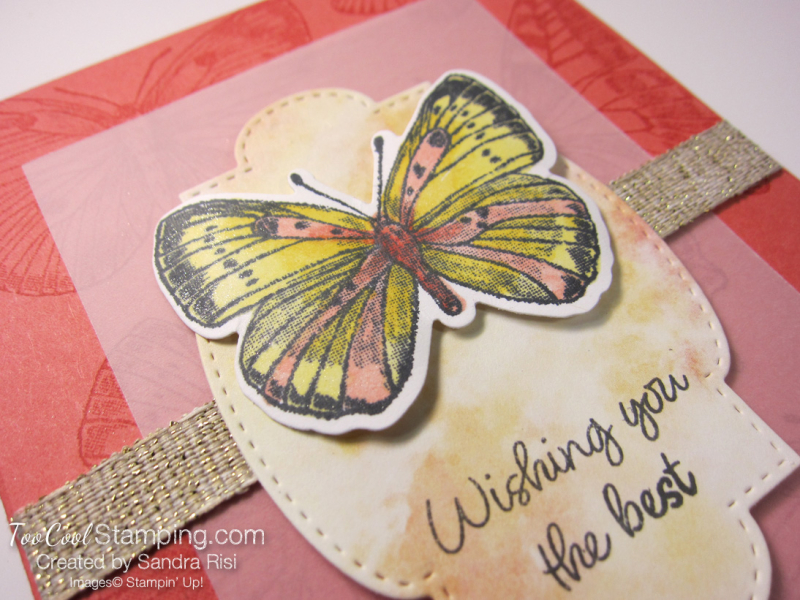 20 butterfly brilliance wishing you the best - risi 3