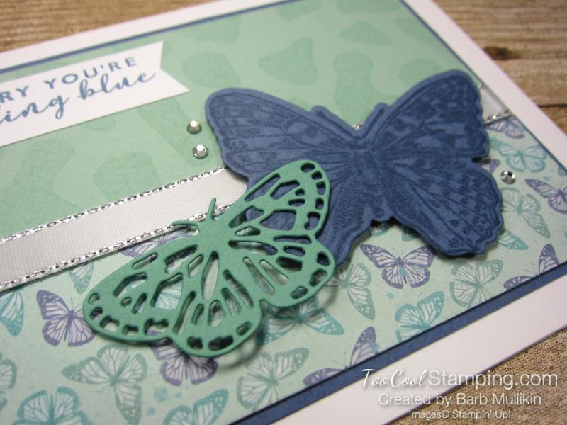 22 butterfly brilliance Sorry Youre feeling blue - mullikin 2