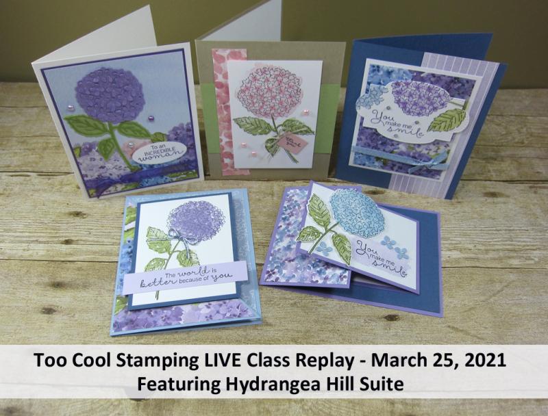 Hydrangea Hill LIVE Class Banner