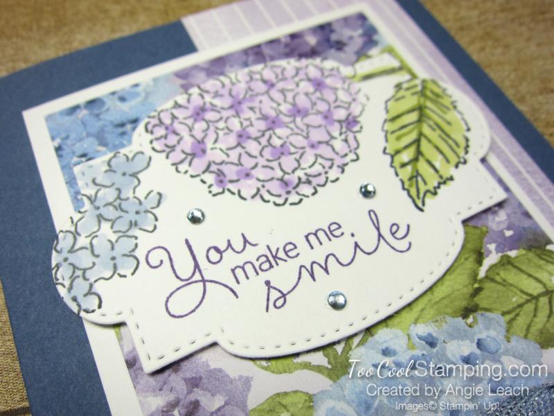 Hydrangea Haven you make me smile - misty 2