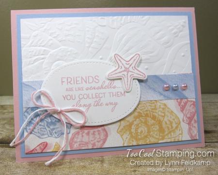Friends like seashells - feldkamp 1