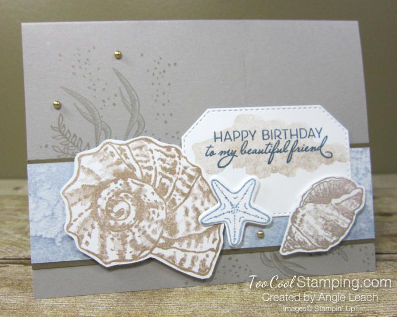 Seaside seashells happy birthday - granite