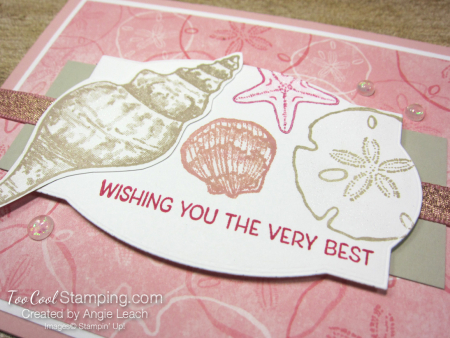 Seashell collection label - blushing 2