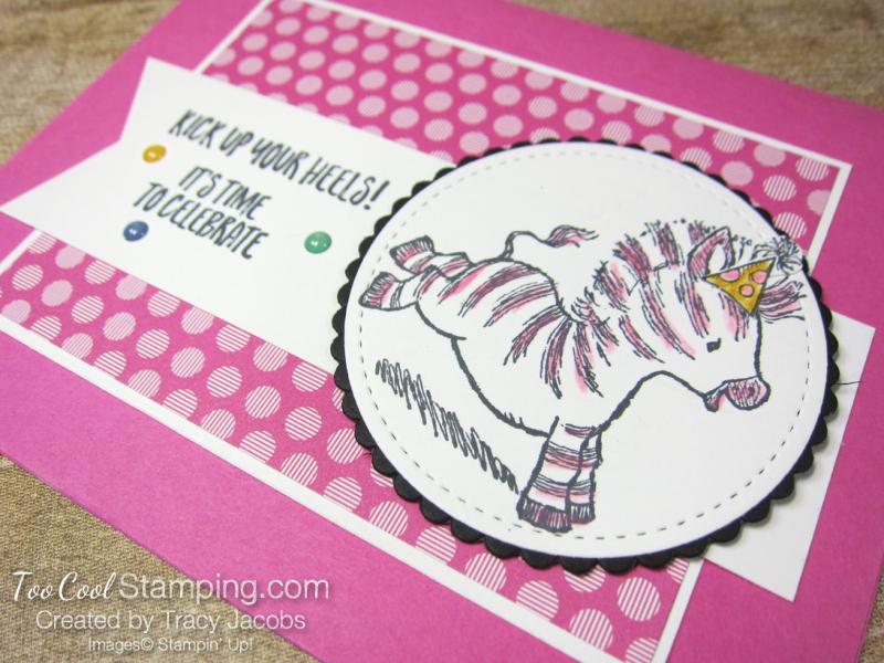 Zany zebras - jacobs 2