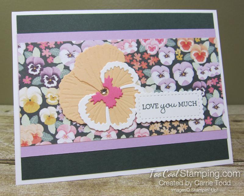 Pansy petals - todd 1
