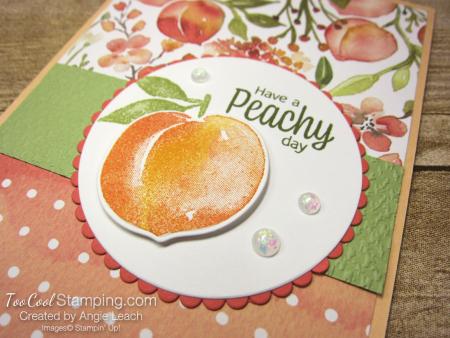 You're a Peach Scallop Circle - papaya 2