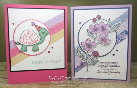 Turtle friends and blossoms - two cool
