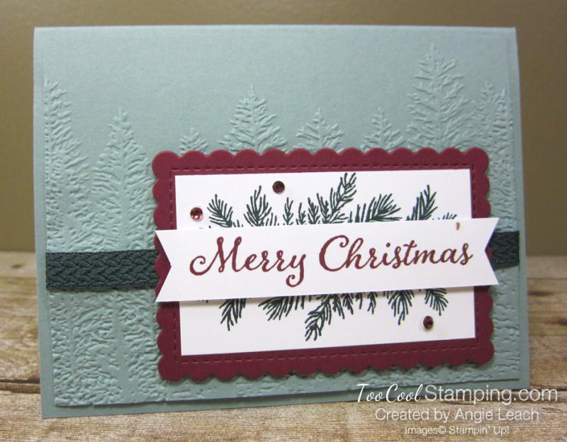 Evergreen elegance merry Christmas - succulent 1