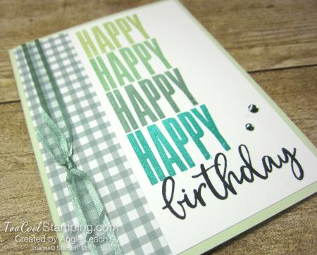 Biggest Wish Hinge Step Birthday - greens 2