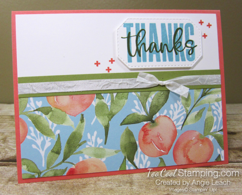 Biggest Wish Peach Thanks - coral 1