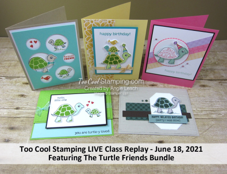 Turtle Friends LIVE Class Banner