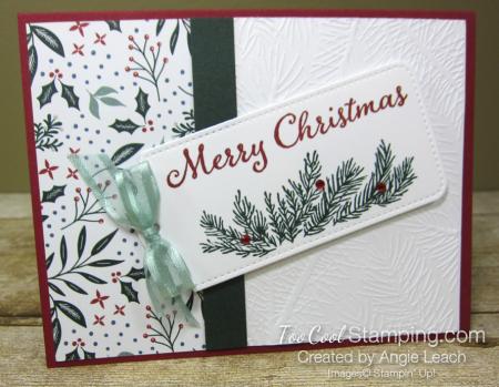 Evergreen elegance merry tag - cherry