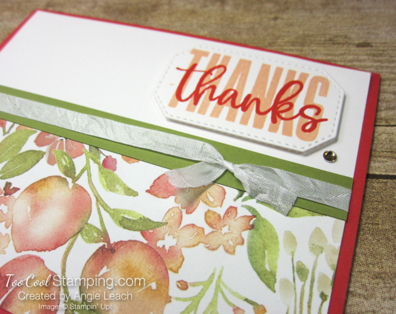 Biggest Wish Peach Thanks - poppy 2