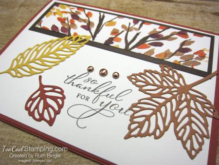 Gorgeous leaves - bingle 2