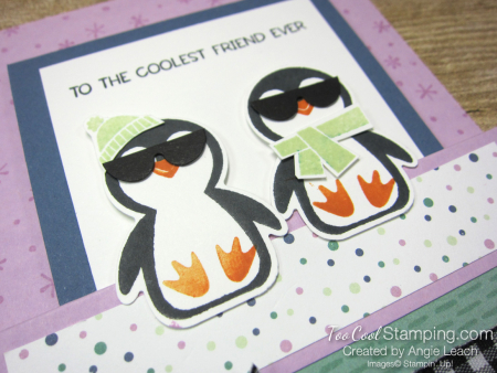 Penguin Place cool with shades -  fressia 2