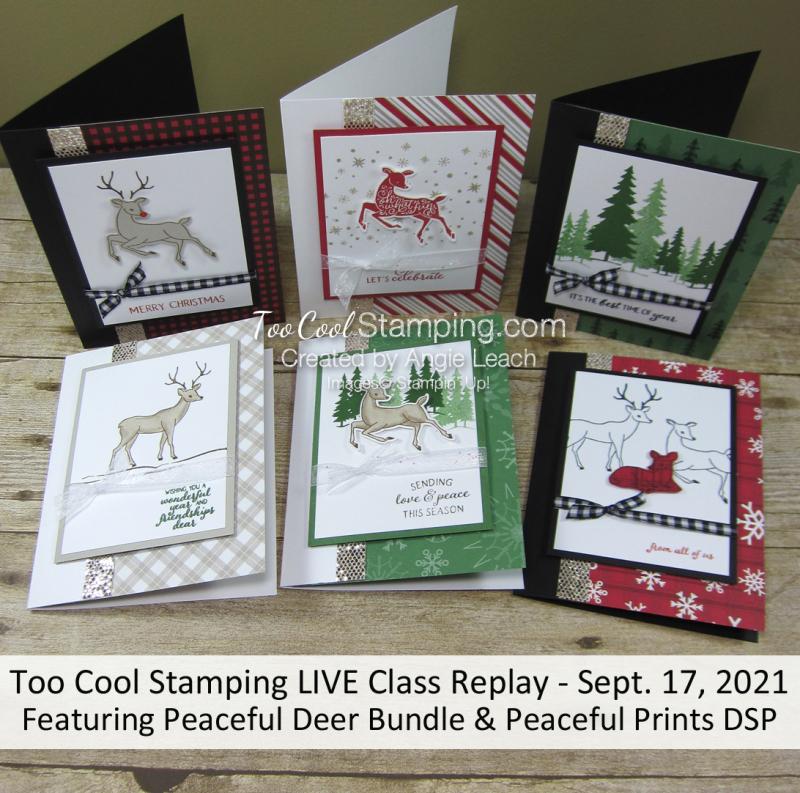 Peaceful Deer Class Banner